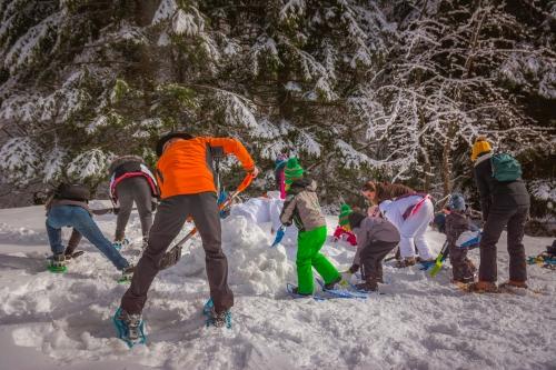 En hiver - Alter'Alpa Tourisme
