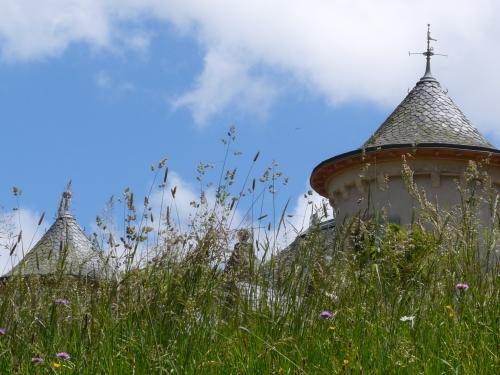 Autour de Château de la Cheyrelle
