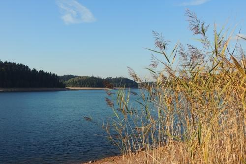 Journée au Lac de Pierre-Percée