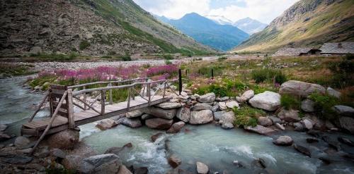 Randos à Bonneval-sur-Arc en Savoie