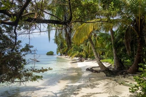 Grenade, l'île aux épices !